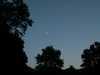 Stromy a mesiac Veľká Británia/Velka Britania