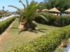 v hotelovej záhrade Tunisko