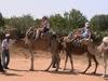 naša ťavia karavána Tunisko