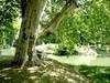 Hlohovec - Zámocká záhrada