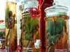 Tradicna cinska medicina Čína/Cina