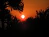 http://fotografie.skrz.sk/image/1/small/24177.jpeg
