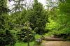 Park s drevinami Arborétum Mlyňany/Arboretum Mlynany