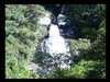 ..divočina Brazília/Brazilia