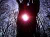 Slnečný strom Vihorlatské Vrchy (horstvo)/Vihorlatske Vrchy (horstvo)