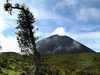 Sopka Pacaya Guatemala